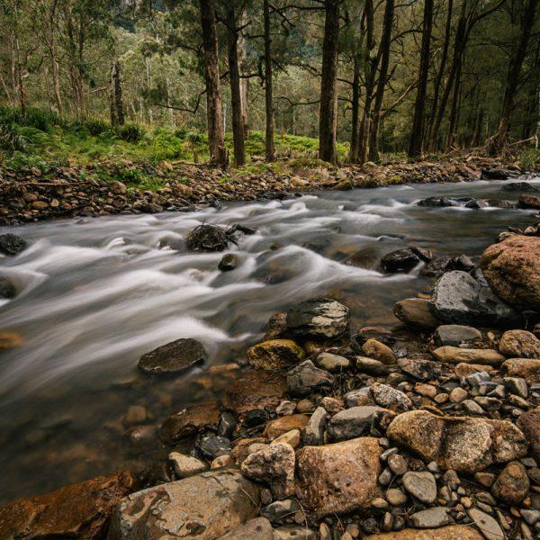 Adjinbilly Creek Flowing