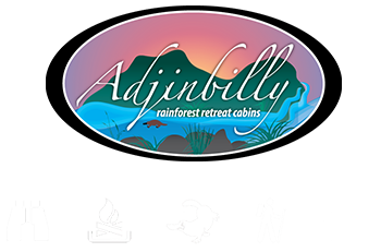 Adjinbilly Footer Logo