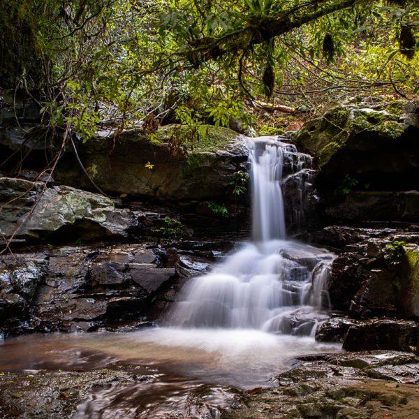 Adjinbilly Waterfall